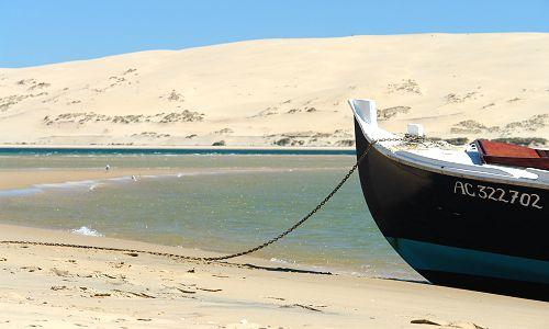 Dune bat 1